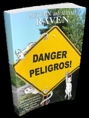 peligros-book