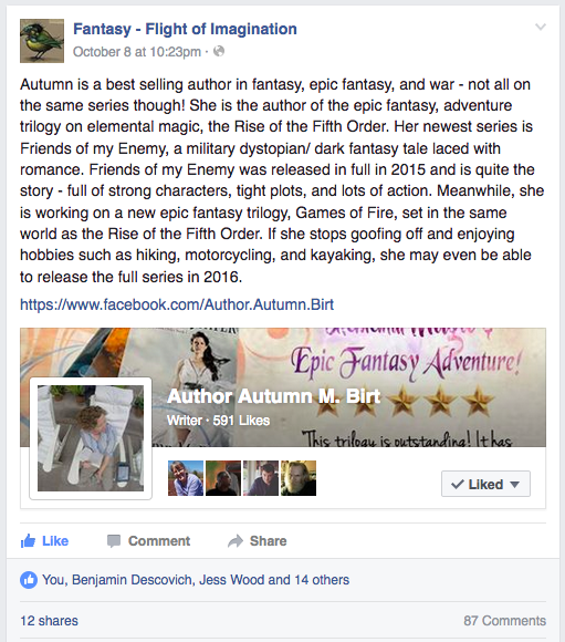 The booth of author Autumn M. Birt for the Facebook event Epic Fantasy Day Virtual Fantasy Con