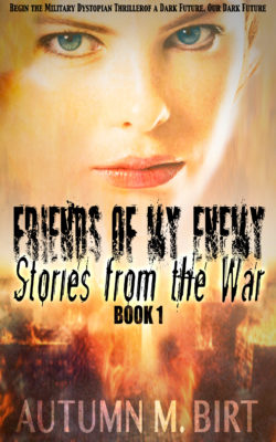 Friends of my Enemy Stories from the War